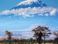 Mt. Kilimanjaro Climbing Treking and Hiking Adventure Safari