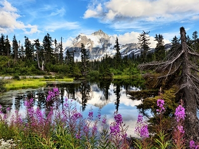 Mt Shuksan & Highwood Lake WA