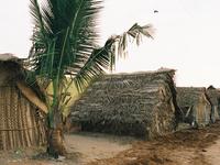 Mudaliarkuppam