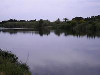 Muga River