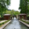 Mughal Gardens At Achabal