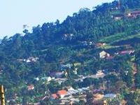 Mukono