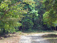 Mukurthi National Park Trekking And Camping