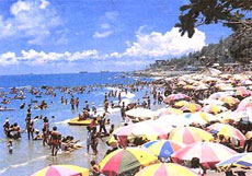 Mulberry Beach - Bai Dau