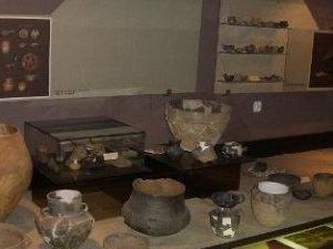 Museum of Opole Silesia
