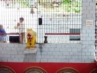 Mata Kuan Rani Temple