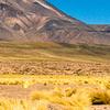 Cerro Miñiques