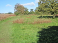 Monken Hadley Common
