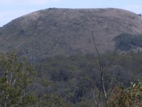 Mount Fox