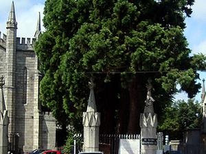 Mount Jerome Cemetery & Crematorium