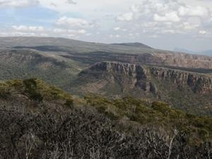 Mount William (Mount Duwil)