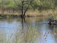 Nadwarciañski Landscape Park
