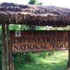 Name Plaque @ Bwindi NP - Uganda