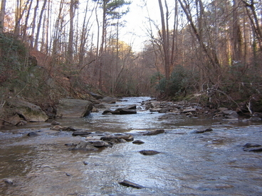 Nancy Creek
