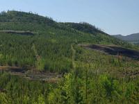 Nechako Plateau