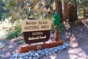 Nelder Grove Campground