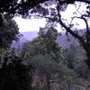 Niyamgiri Hills