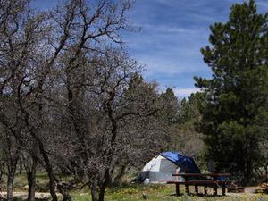 Nizhoni Campground