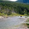 No Name Lake Trail - Glacier - Montana - USA