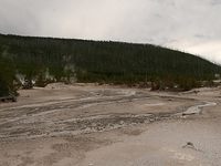 Norris Geyser Basin Nature Trail