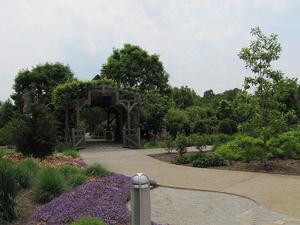 North Carolina Arboretum