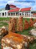 Northeastern Museum Of Petrified Wood