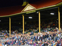 Norwood Oval