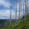 Numa Lookout Trail