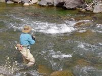 Gardner River