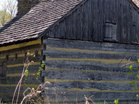 Neill Log House