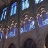 Notre Dame De Paris Windows