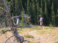 Oldman Lake Trail