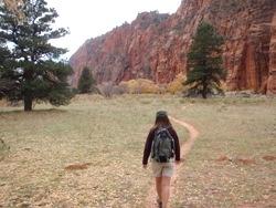 Open Bottom Canyon