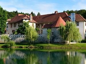 Hotel Grad Otocec