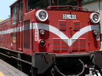 Alishan Floresta Ferroviária