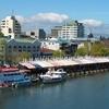 View Of Valdivia