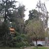 O'Higgins Park