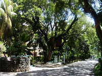 Pasonanca Park
