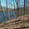Paugussett State Forest
