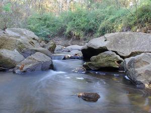 Peachtree Creek