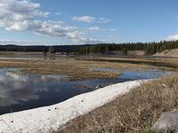 Pelican Creek Nature Trail