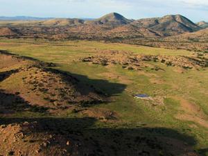 Peloncillo Mountains (Hidalgo County)