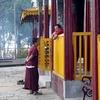 Pemayangtse Monastry Monks - Sikkim