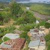 Pemba Island 2 C Tanzania . View From Chake Chake Town Cent