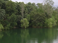 Peppara Wildlife Sanctuary
