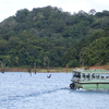 A Boat Cruise On Periyar Lake