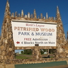 Petrified Wood Park