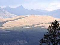 Petrified Forest - Specimen Ridge