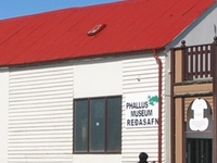 Phallological Museum in Husavik