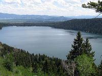 Phelps Lake Overlook Trail